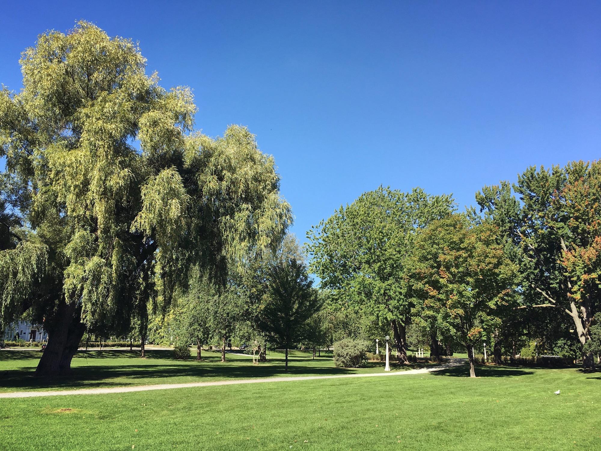 Strathcona Park, Ottawa